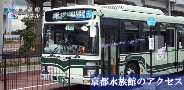 京都水族館行きのバス
