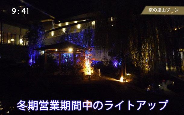 京の里山ゾーンのライトアップ
