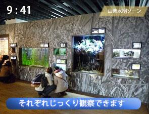 京都水族館の山紫水明ゾーン