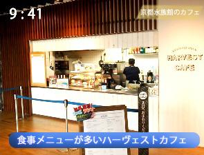 京都水族館のハーヴェストカフェ