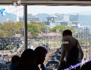 京都鉄道博物館のレストランの窓から見える梅小路公園