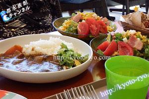 カレーと野菜サラダ