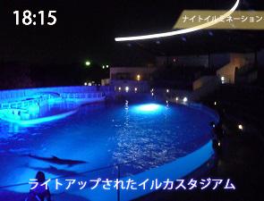 京都水族館のイルカスタジアムのライトアップ