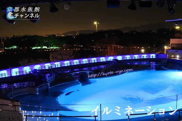 京都水族館のイルカスタジアムのイルミネーション