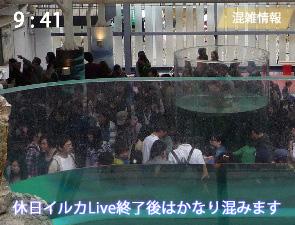 京都水族館のかいじゅうゾーンの混雑