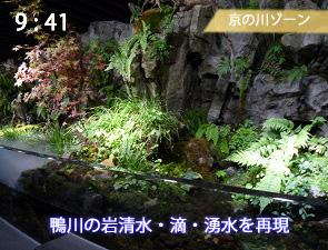 京都の鴨川を再現した水槽