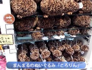 京都水族館のお土産オススメランキング