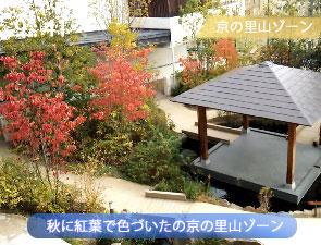 秋の京都水族館の里山ゾーン