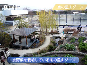冬の京都水族館の里山ゾーン