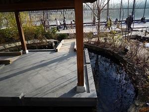 京の里山ゾーンの池