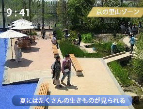 夏の京都水族館の里山ゾーン