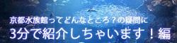 京都水族館の混み具合