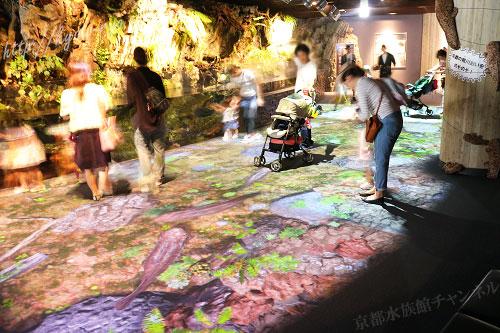 京都水族館のオオサンショウウオのイベント
