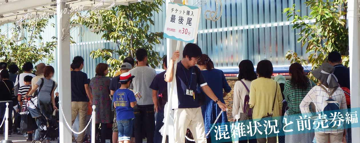 京都水族館の混雑状況と前売り券