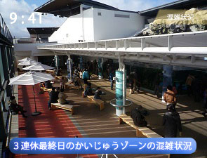 京都水族館の連休のかいじゅうカフェの様子