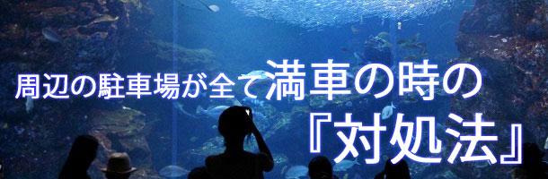 京都水族館周辺の駐車場が満車時の対処法